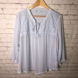 Maurices Blue Sheer Top